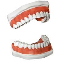 acute dental dentures and partial dentures
